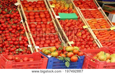 Many Ripe Red Tomato In The Boxes On Sale In The Grocery Store I