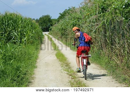 Young cyclist pedal on dirt road with side corn fields in summer