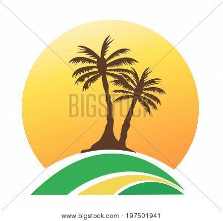 palm tree image vector illustration art design