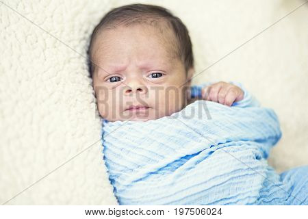 Portrait of a Cute multi-racial Newborn baby boy in a blanket