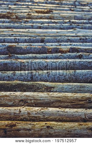 Stacked Tree Trunks Pattern