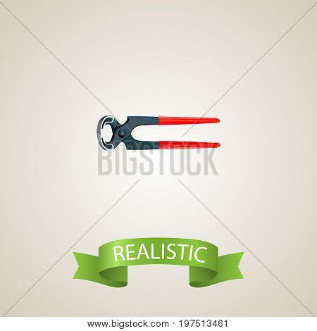 Realistic Pincers Element. Vector Illustration Of Realistic Tongs Isolated On Clean Background