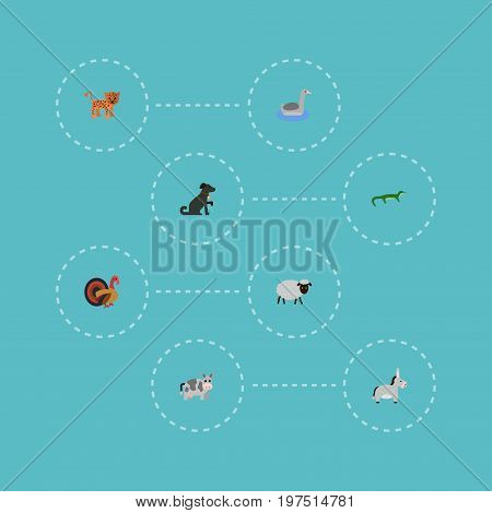 Flat Icons Jackass, Gobbler, Reptile And Other Vector Elements