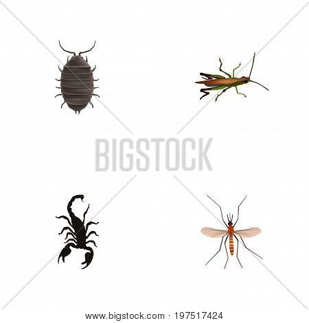 Realistic Poisonous, Dor, Gnat And Other Vector Elements