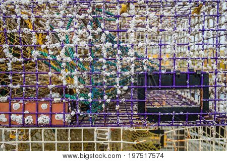 Used lobster trap closeup with barnacles and inner compartments
