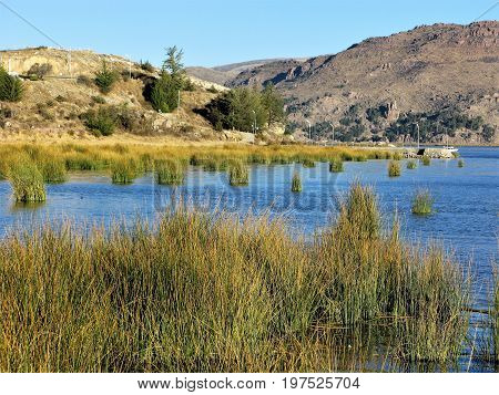 Small bay with grass tufts in Lake Titicaca