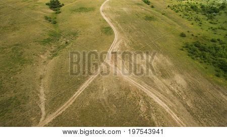 Paths In The Field