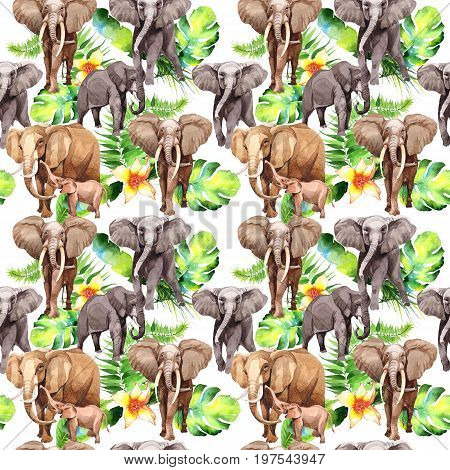 Exotic elephant wild animal pattern in a watercolor style.