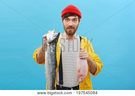 Handsome Bearded Fishmonger Wearing Red Hat, Sweater, Jean Overalls And Yellow Anorak Holding Two Ni