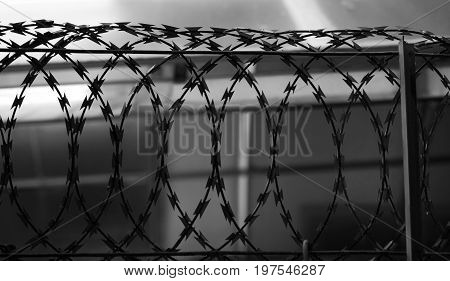 BLACK AND WHITE PHOTO OF SILHOUETTE METAL RAZOR WIRE FENCING