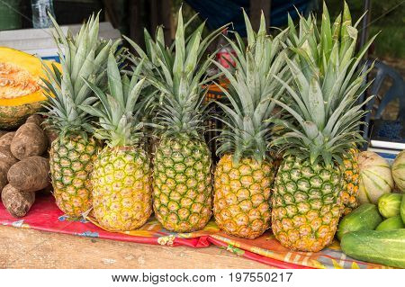 Many Pineapples For Sale At The Local Market In Martinique
