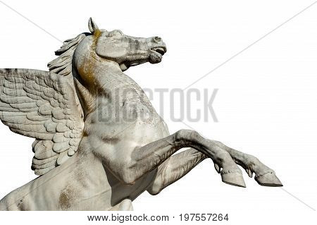 Florence ITALY - July 18 2017: Pegasus statue by Aristodemo Costoli (1865). On white background. It is located in the Boboli Garden.