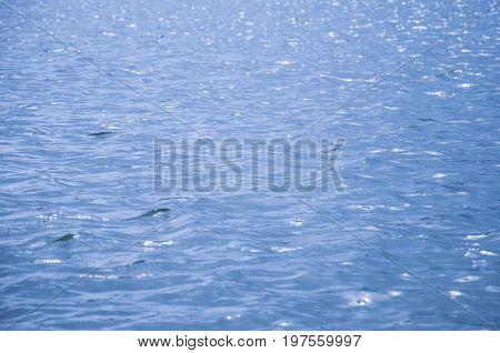 blue water surface . river evening sunset