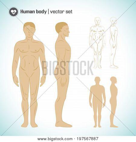 Full length naked white male body silhouettes set isolated vector illustration
