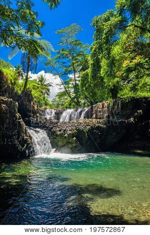 Vibrant Togitogiga falls with swimming hole on Upolu, Samoa Islands