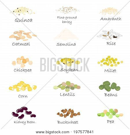 Vector set of cereal and grain emblems. For packing groats, kitchen jar prints, advertising healthy food. Chick-pea, soybean, amaranth, quinoa, semolina, fine-ground barley, buckwheet, millet, corn, rice lentils and oatmeal