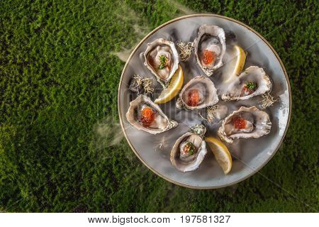 Opened Oysters on a stoneware plate on a background of green moss.
