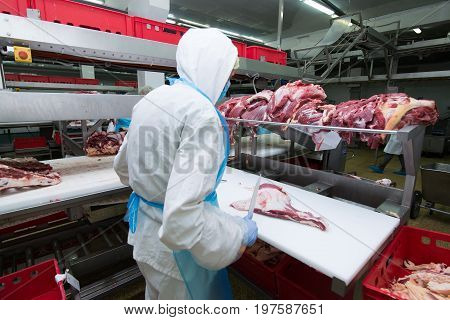 cutting meat slaughterhouse workers in a meat factory