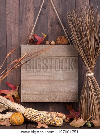 Blank wooden sign hanging on a wood background with autumn decorations