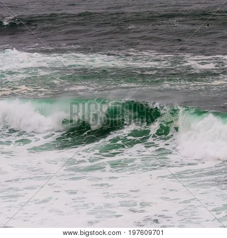 Curling Teal Wave and White Wash in Pacific ocean