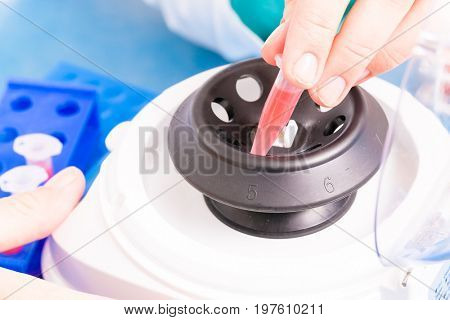 PCR test tubes and centrifuge