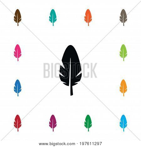 Nib Vector Element Can Be Used For Nib, Pen, Feather Design Concept.  Isolated Plume Icon.