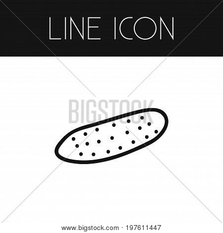 Pickles Vector Element Can Be Used For Zucchini, Cucumber, Pickles Design Concept.  Isolated Zucchini Outline.