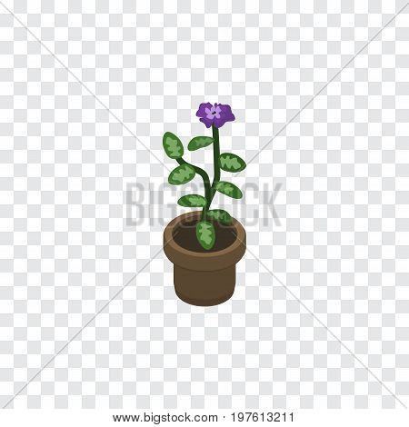 Flower  Vector Element Can Be Used For Flower, Flowerpot, Pot Design Concept.  Isolated Flowerpot Isometric.