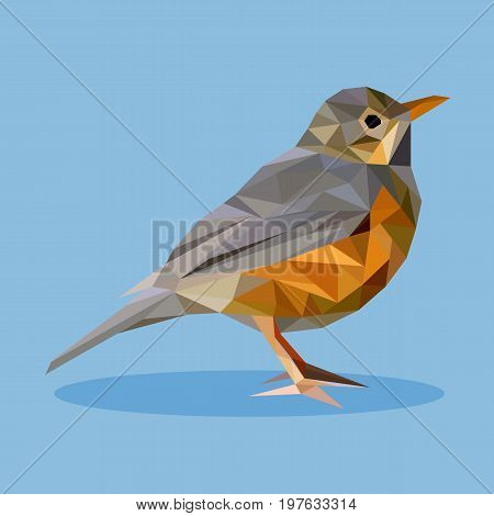Rufous-bellied thrush in polygon style. Isolated illustration can be used in printing: card, t-shirt, phone case, mug, bag and so on.