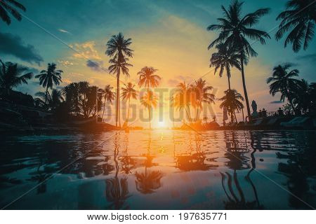 Silhouettes of palm trees on the sea tropical beach during an amazing sunset.