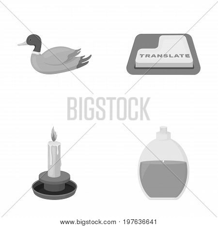 entertainment, rarity, hygieneand other  icon in monochrome style. shampoo, ecology, business icons in set collection.