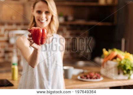 Colors of health. Lively pretty attractive lady using only high quality food while cooking at home and taking care of her diet