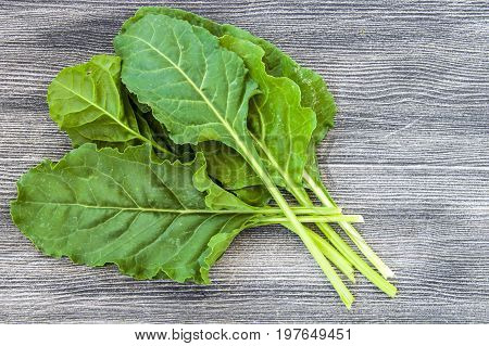 Fresh and natural chard leaves, chard, which is made by wrapping and scalding delicious food,