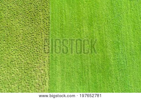 Aerial image - Farmers field and uncultivated land seen from high above