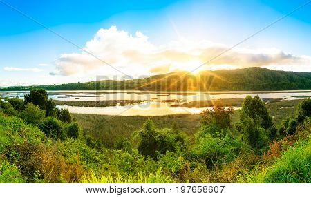 Landscape In Valdivia