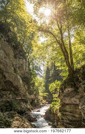 The fabulous Vintgar Gorge near lake Bled in Slovenia.