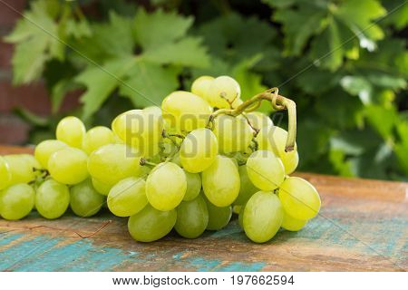 Healthy Fruits White Wine Grapes On The Wooden Table In The Vineyard, Wine Grapes, Bunch Of Grapes R