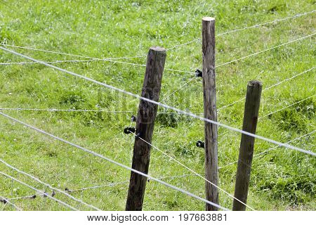 Poles with barbed and fence wire in the Neterlands