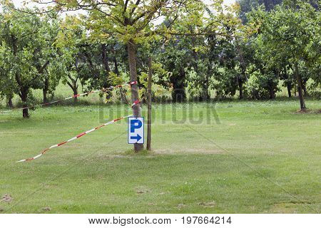 Parking sign attached to a tree on grassland