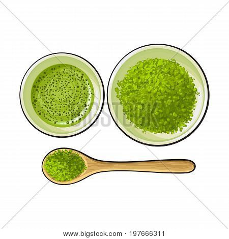 Hand drawn bowl and bamboo spoon of matcha powder, green tea cup, sketch vector illustration isolated on white background. Realistic hand drawing of matcha green tea powder and hot matcha tea cup