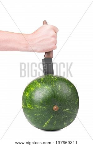 A big knife is stabbed into the stripped round firm watermelon. The white male hand with a big steel  knife is cutting a ripe round  greenish watermelon. The watermelon is on the white background.