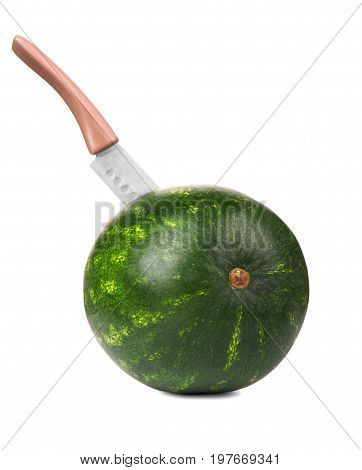 A macro of a stripped round firm watermelon stabbed with a big knife. A big steel knife is cutting a ripe round greenish watermelon. The watermelon isolated on the white background.