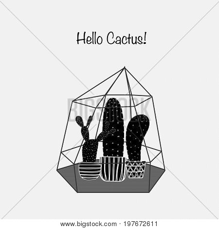 Cactuses In Glass Terrariums. Vector Illustration eps 10.