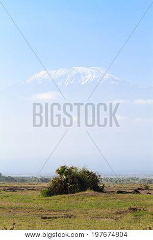 Portrait of Kilimanjaro mountain. Amboseli, Kenya. Africa