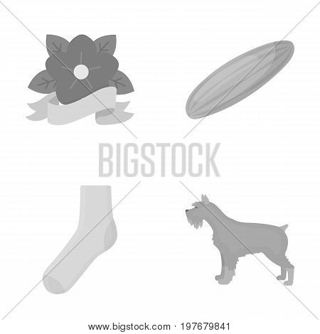 conviction, trade, industrial and other  icon in monochrome style., animal, care, business icons in set collection