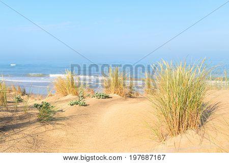 Beach at Atlantic ocean in France