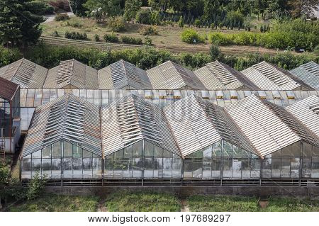 Rows Of Glass Greenhouses