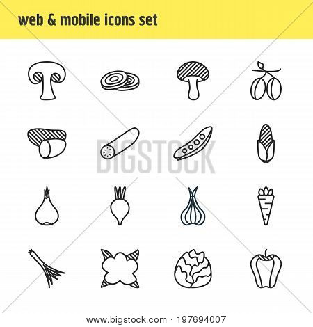 Editable Pack Of Mushroom, Cauliflower, Circles And Other Elements.  Vector Illustration Of 16 Food Icons.