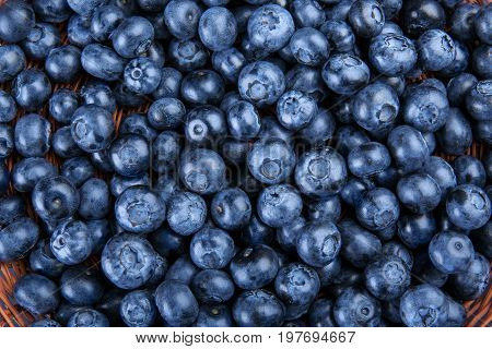A beautiful blueberry background. A macro picture of saturated purple blueberries. Refreshing and antioxidant blueberries. Juicy berries for organic summer yogurts and nutritious milkshakes.