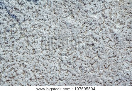 Raw salt crystals on a coast of lake. Natural salt texture.